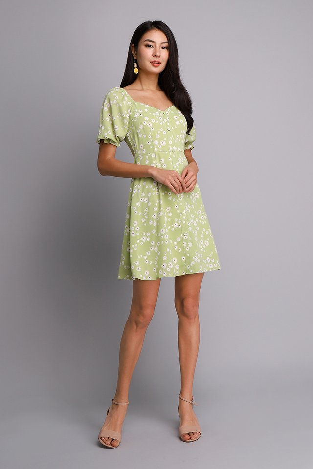 Pocketful Of Daisies Dress In Apple Green